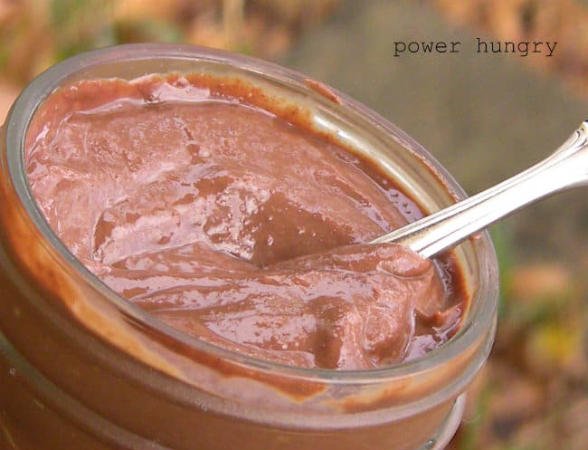 No-Cook, High Protein Chocolate & Pumpkin Pudding | power hungry