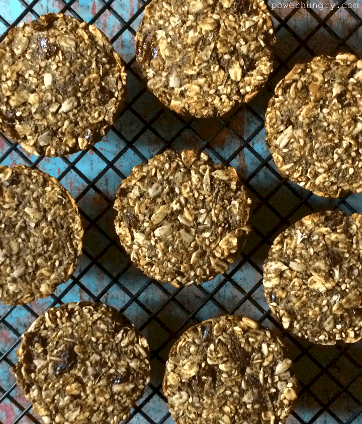 hemp protein pucks 2