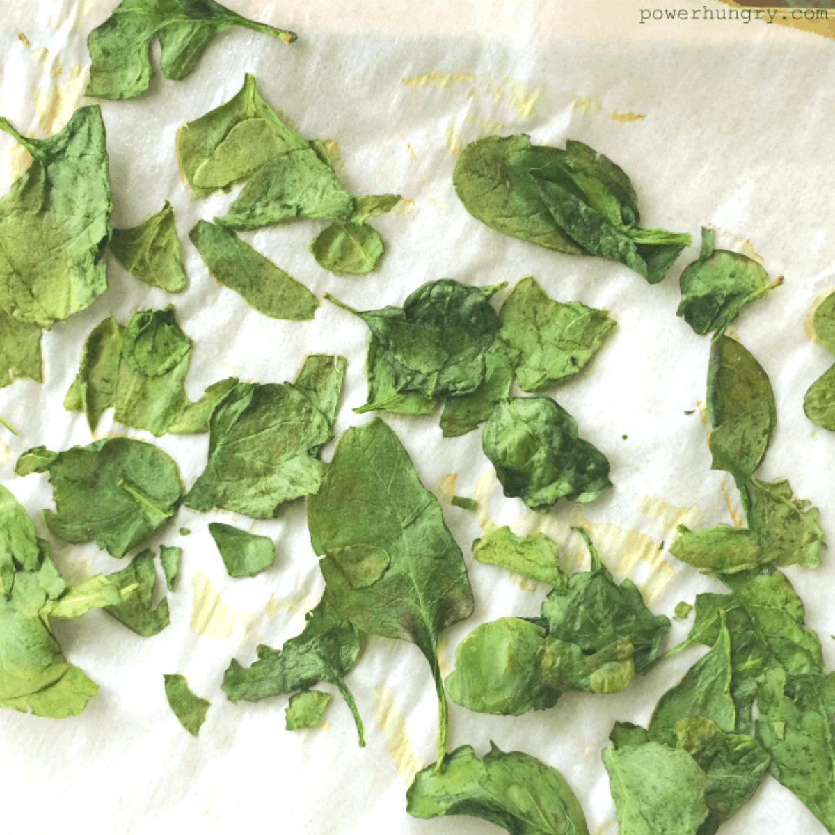 oven dried spinach leaves on a parchment lined baking sheet
