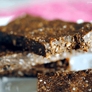 Chocolate Coconut RX Protein Bars {Vegan}