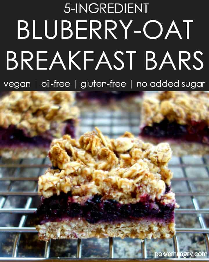 Close-up of a 5-Ingredient blueberry oat breakfast bar